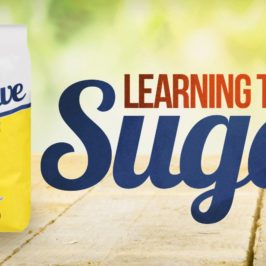 Post #2: I Almost Snorted Sugar in a Cheap Motel